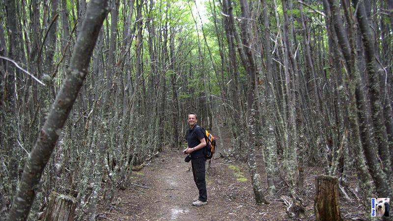 Parc national de la Terre de Feu. Balade dans une nature intacte.