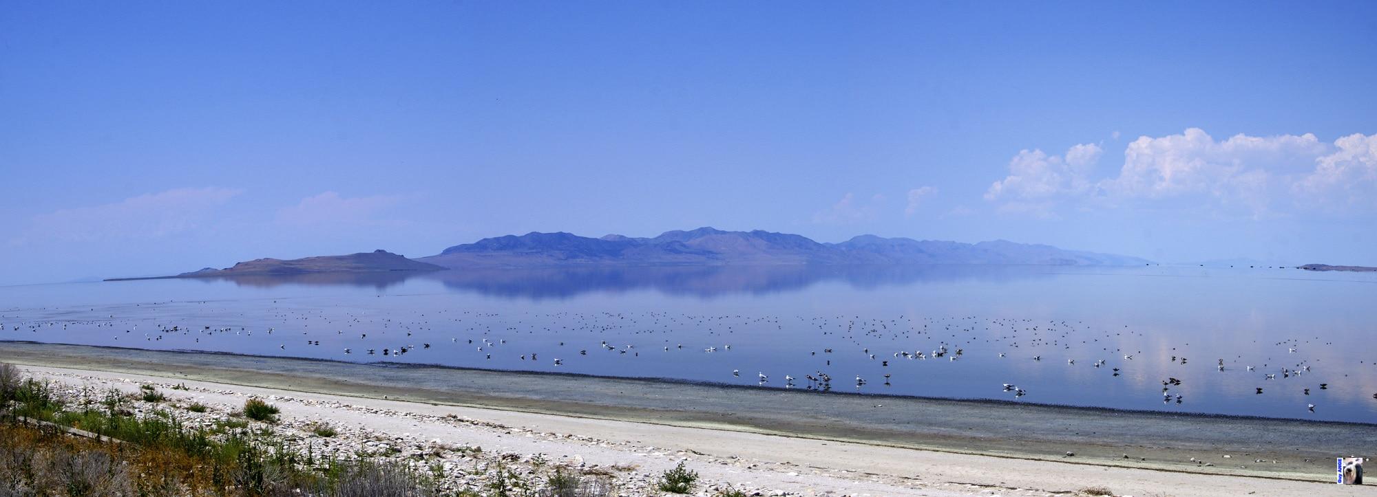 Antelop Island. Great Salt Lake State Park