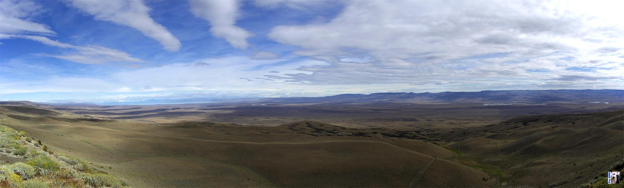 Paysage typique de la pampa en Patagonie. Plat jusqu'à l'horizon.