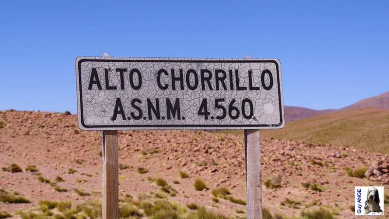 Argentine, Puna, Col de Chorillo.