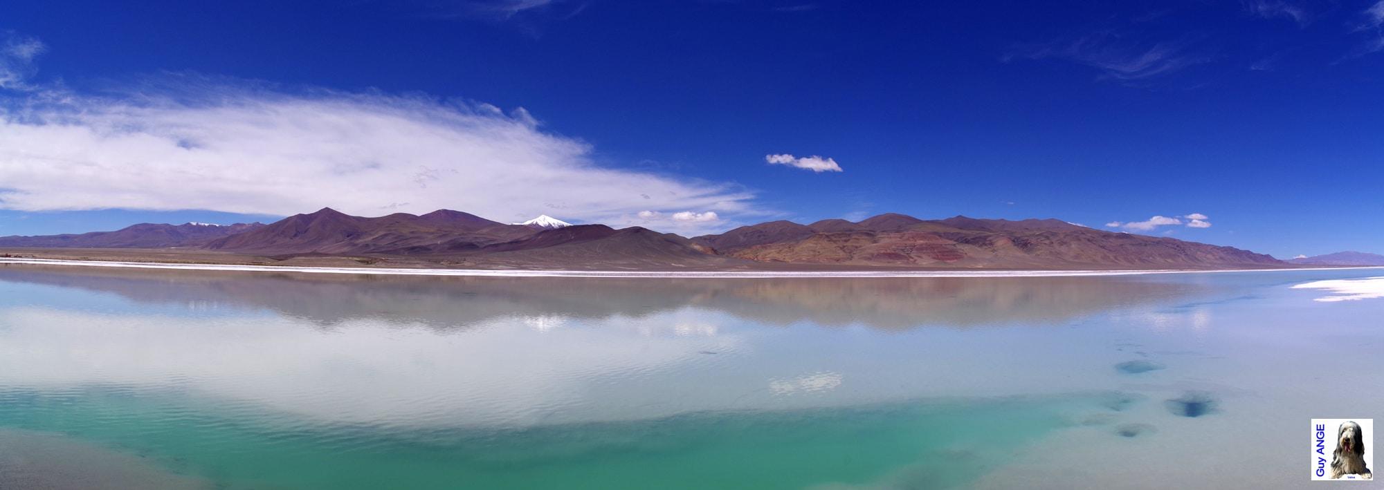 Argentine, région de la Puna. La Laguna Seca.