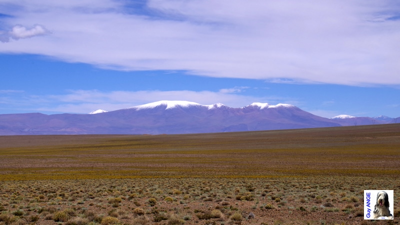 Argentine, sur la route vers Tolar Grande.