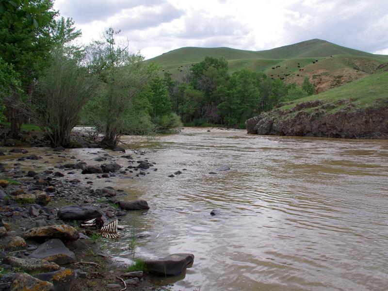 Rivière polluée par l'industrie minière.