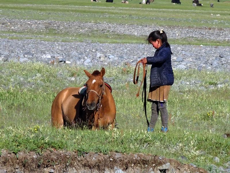 Elle n'arrive pas à remonter à cheval.