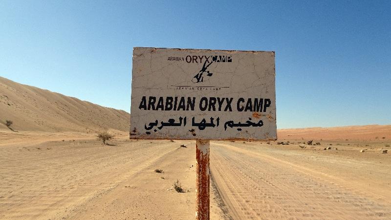 l'Arabian Oryx Camp est en vue.