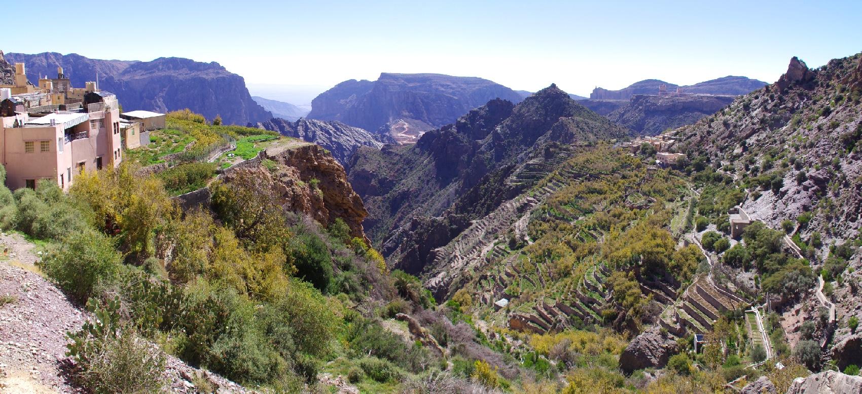 Le Djebel Akhdar à plus de 2000 m d'altitude. C'est un des vergers d'Oman.