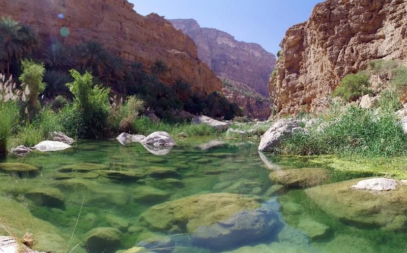 Petit bassin aux eaux turquoises dans le Wadi Tiwi non loin de Sour.