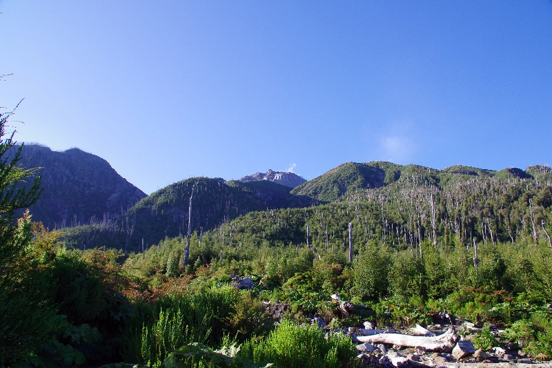 Début de notre ascension sur le volcan Chaitèn.