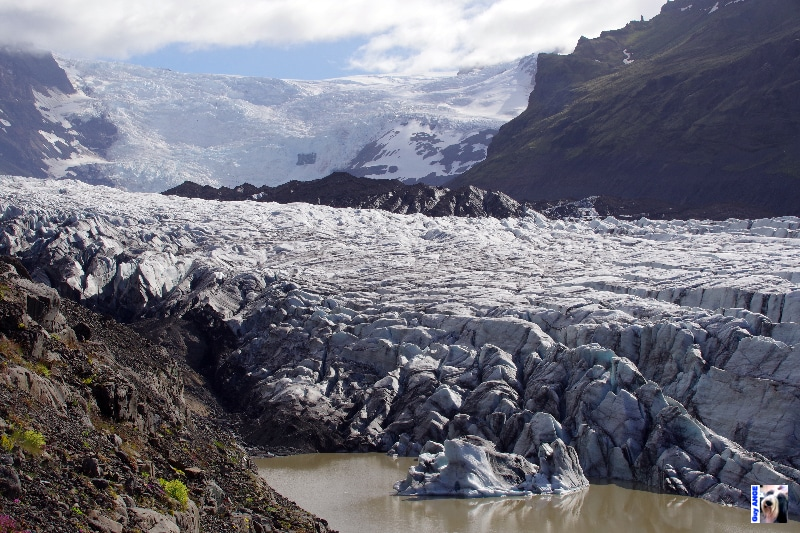 Le Svínafeljökull, langue glaciaire issue du Mýrdalsjökull.