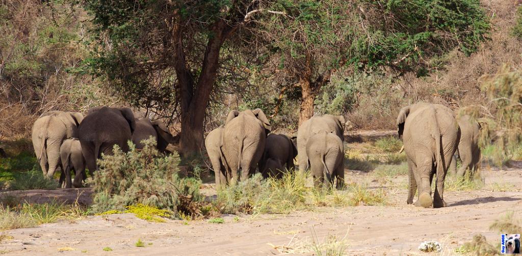 Namibie.