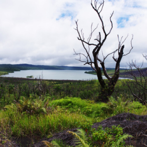 Vanuatu, Gaua.