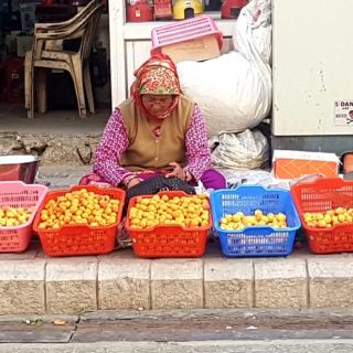 Sur la rue principale de Leh. Les abricots de la Nubra ou du zanskar.